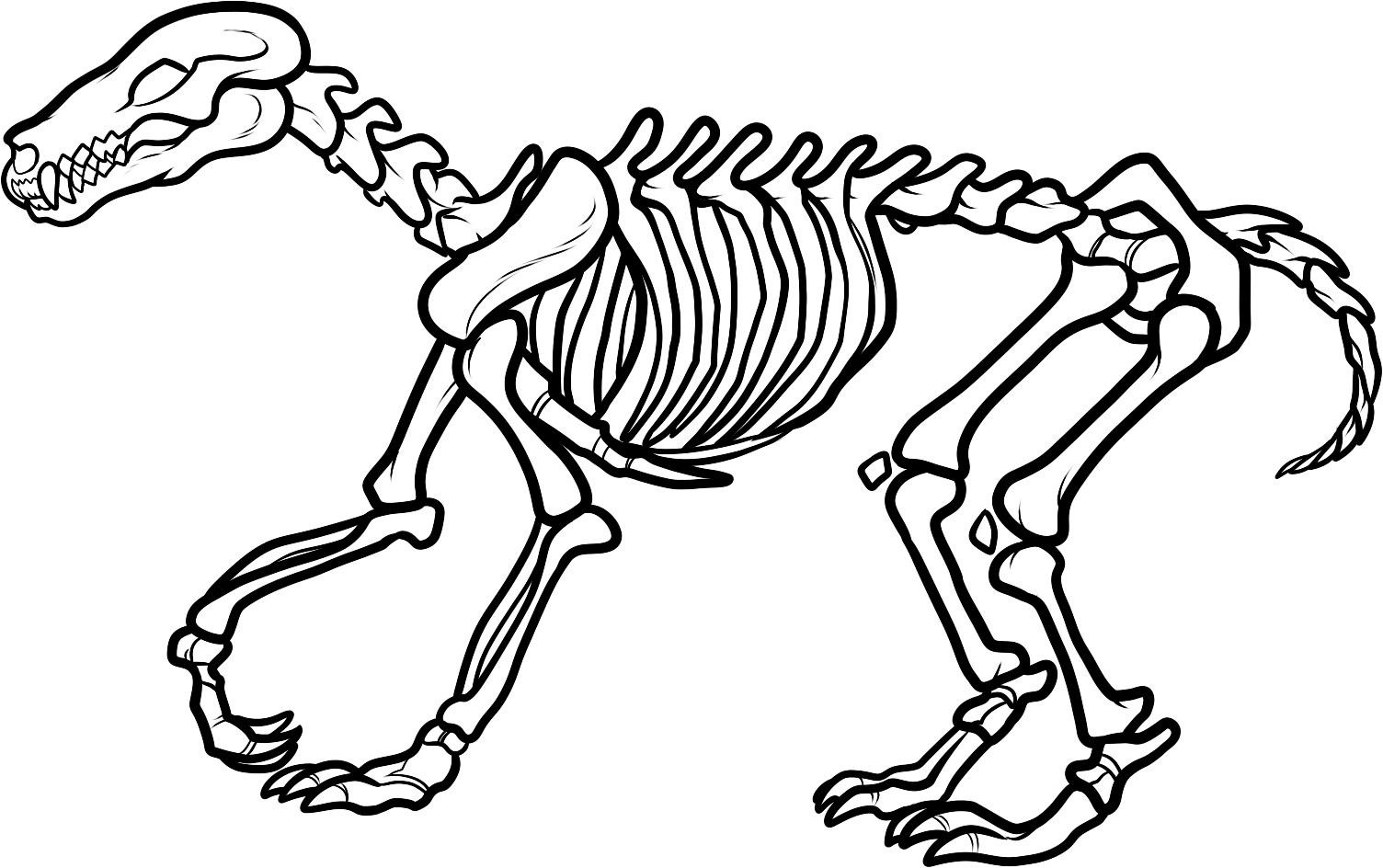 1504x944 Dinosaur Bones Coloring Pages