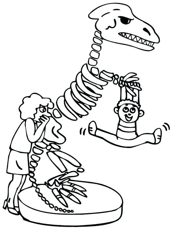 600x776 Human Skeleton Coloring Page Human Skeleton Coloring Page Dinosaur