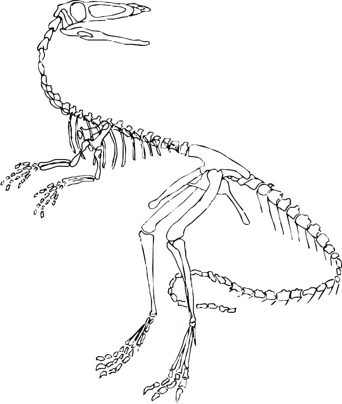 700x828 Skeleton Coloring Page Coloring Pages Skeleton Skeleton And His