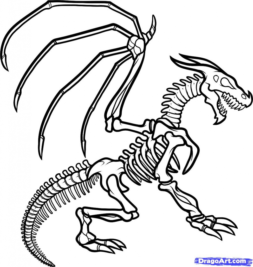 973x1024 Approved Dinosaur Skeleton Coloring Page Clipa
