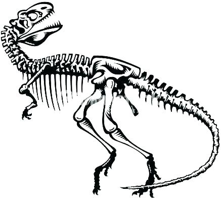 437x391 Dinosaur Fossil Coloring Pages Deepart