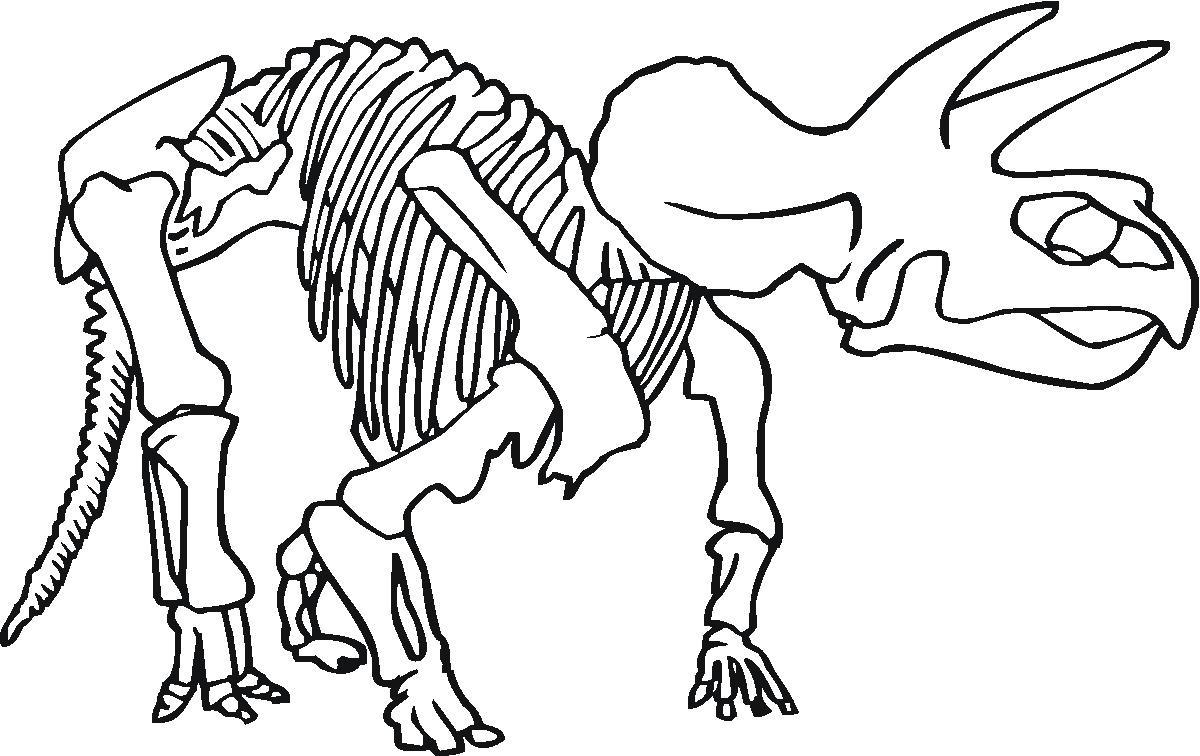 1200x756 Dinosaur Bones Coloring Pages