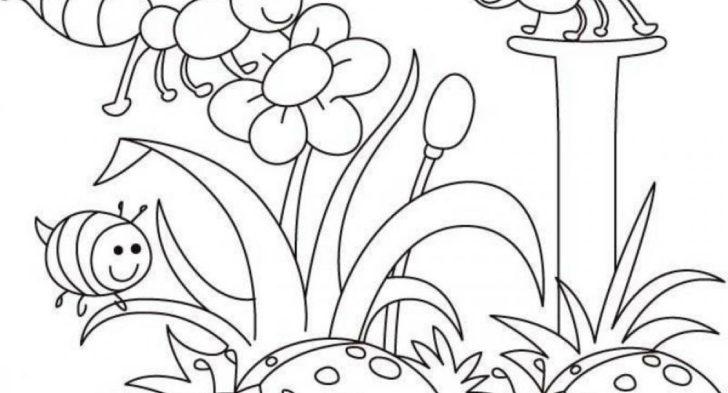 728x393 Spring Landscape Coloring Page Disney Spring Coloring Time, Spring