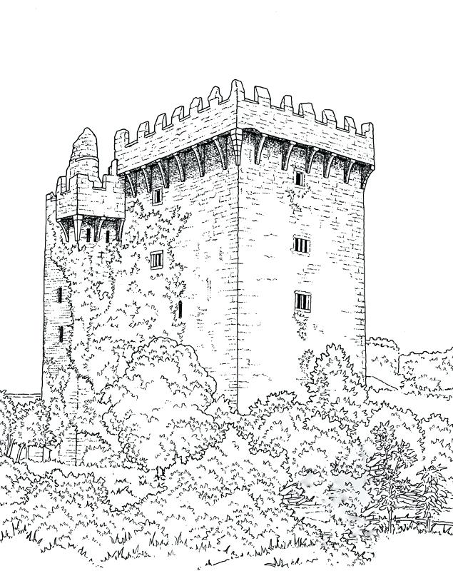 Disney World Castle Coloring Page At Getdrawings Com Free For