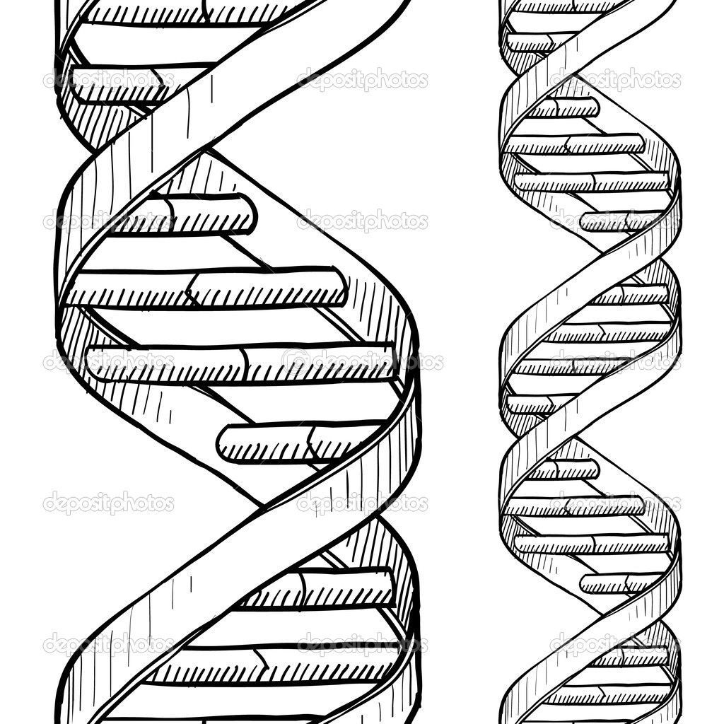 1024x1024 Incredible Dna Double Helix Art Genetics Within Pic Of Coloring