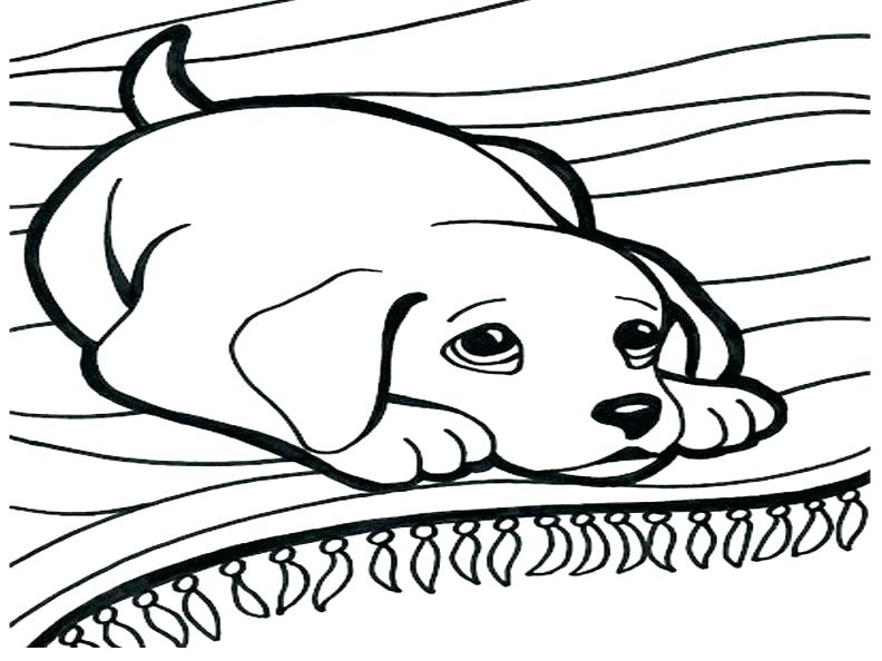 792x594 Cat And Dog Coloring Pages Also Dog Coloring Sheets Free Printable