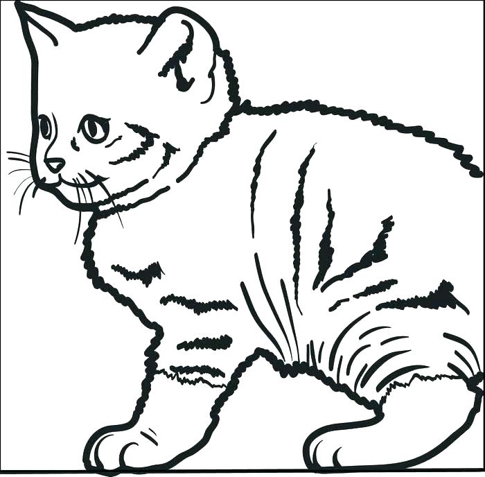 700x688 Free Printable Pete The Cat Coloring Sheets Cute Kitty Coloring