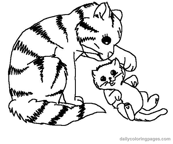 600x500 Cat Color Pages Printable Cute Cat Coloring Pages Cat