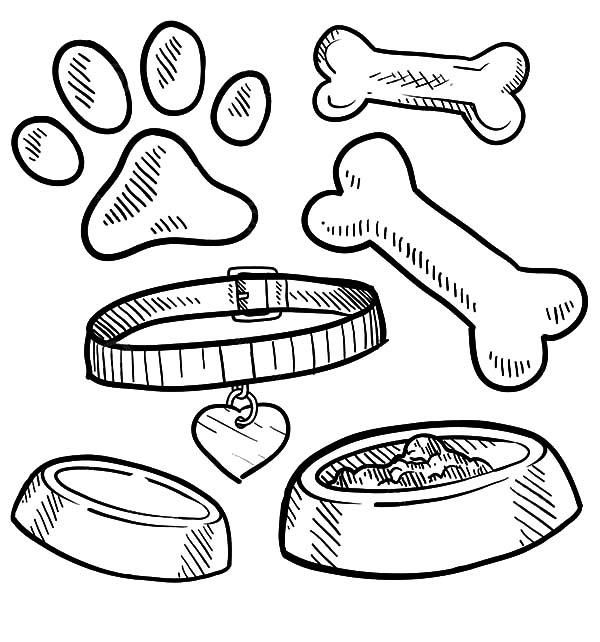 600x642 Images Of Dog Food Bowl Coloring Page