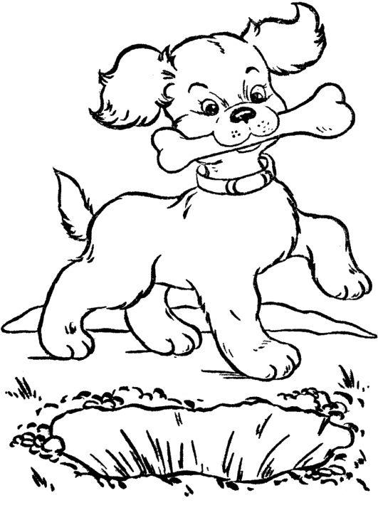 531x724 Eat Dog Bone Coloring Page Dog Dog Bones, Punch