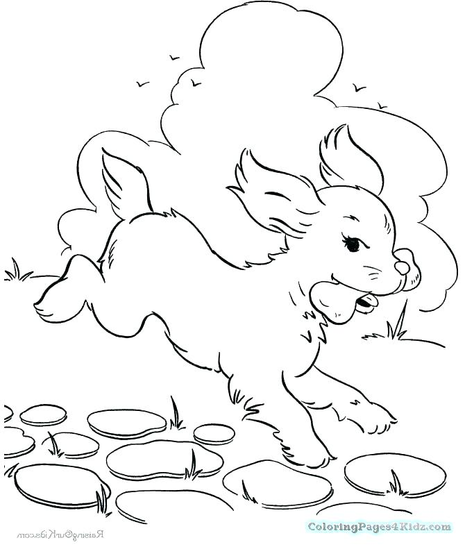 670x788 Dog Bone Coloring Page Dog Bone Coloring Page Dog Bone And Dog