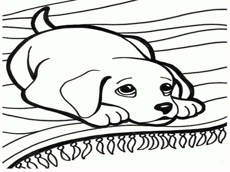 Dog Cartoon Coloring Pages