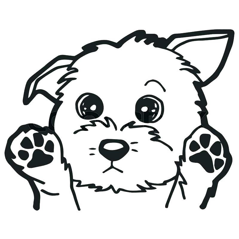 800x800 Dog Coloring Page Cartoon Dog Coloring Pages A Cute Page Dog Breed