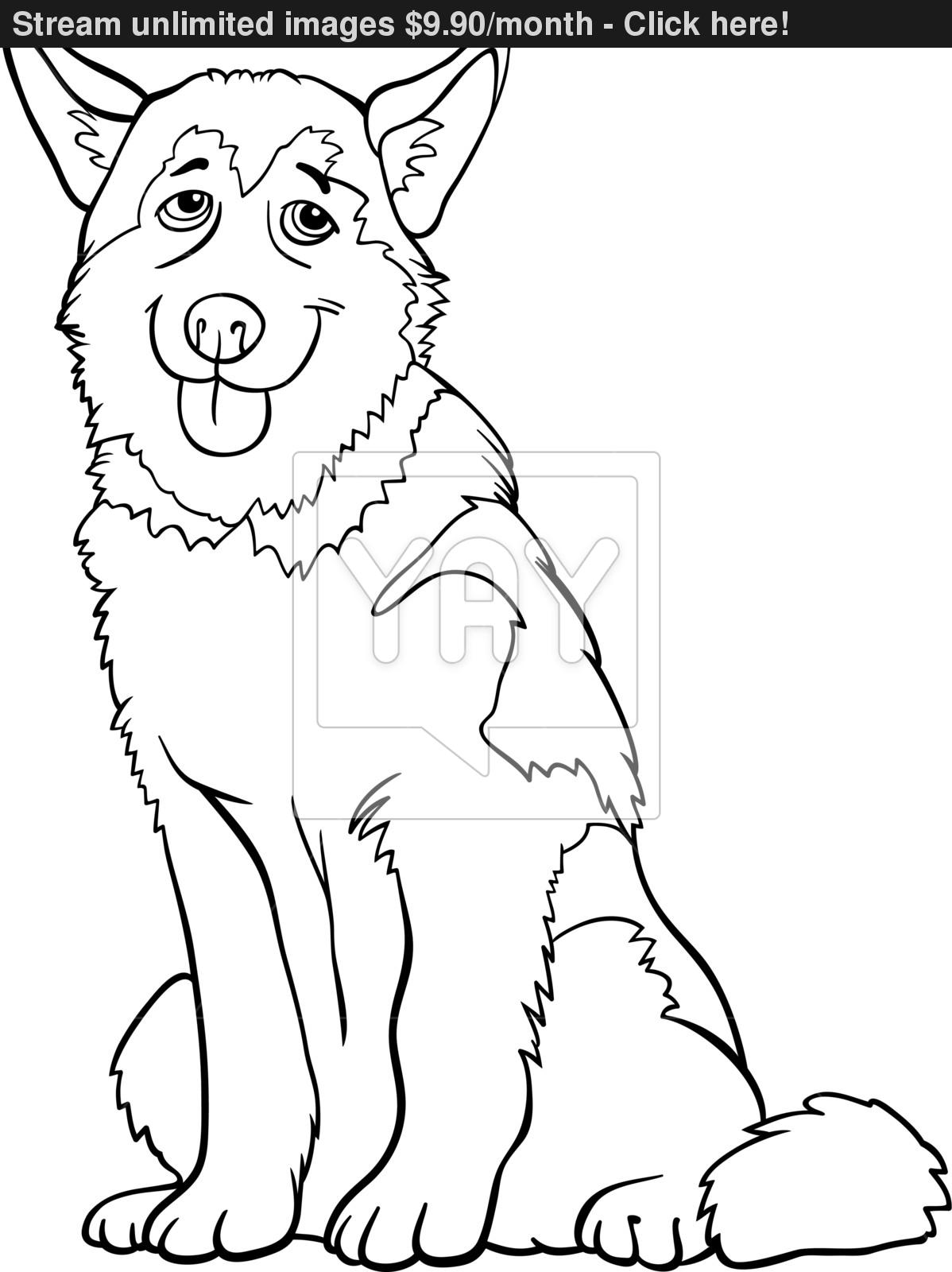 1198x1600 Siberian Husky Coloring Page Pencil Drawing Free Printable Pages
