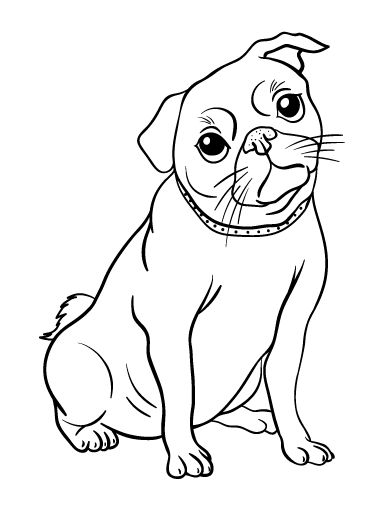 Dog Collar Coloring Pages