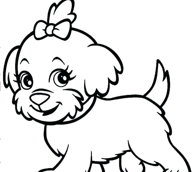 678x600 Dog Color Pages