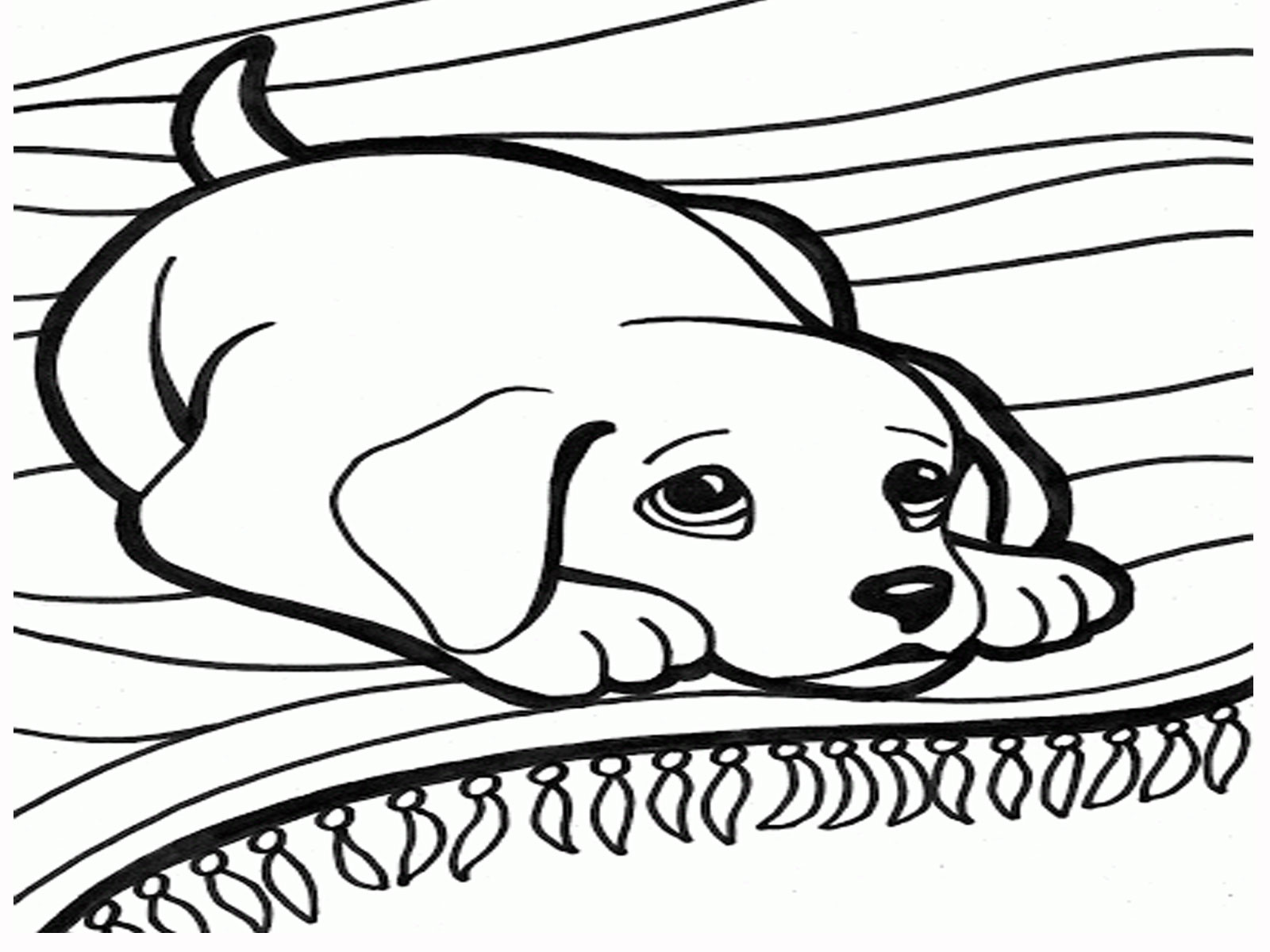 1600x1200 Dog Dogs Coloring Pages For Adults Justcolor In Wagashiya