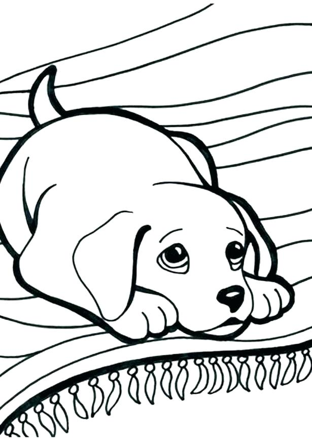 615x870 Doggy Coloring Page Color