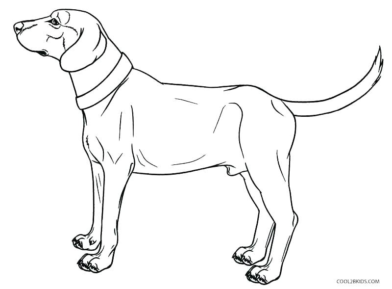 800x589 Doggy Coloring Pages Dog Coloring Pages To Print Dogs Coloring