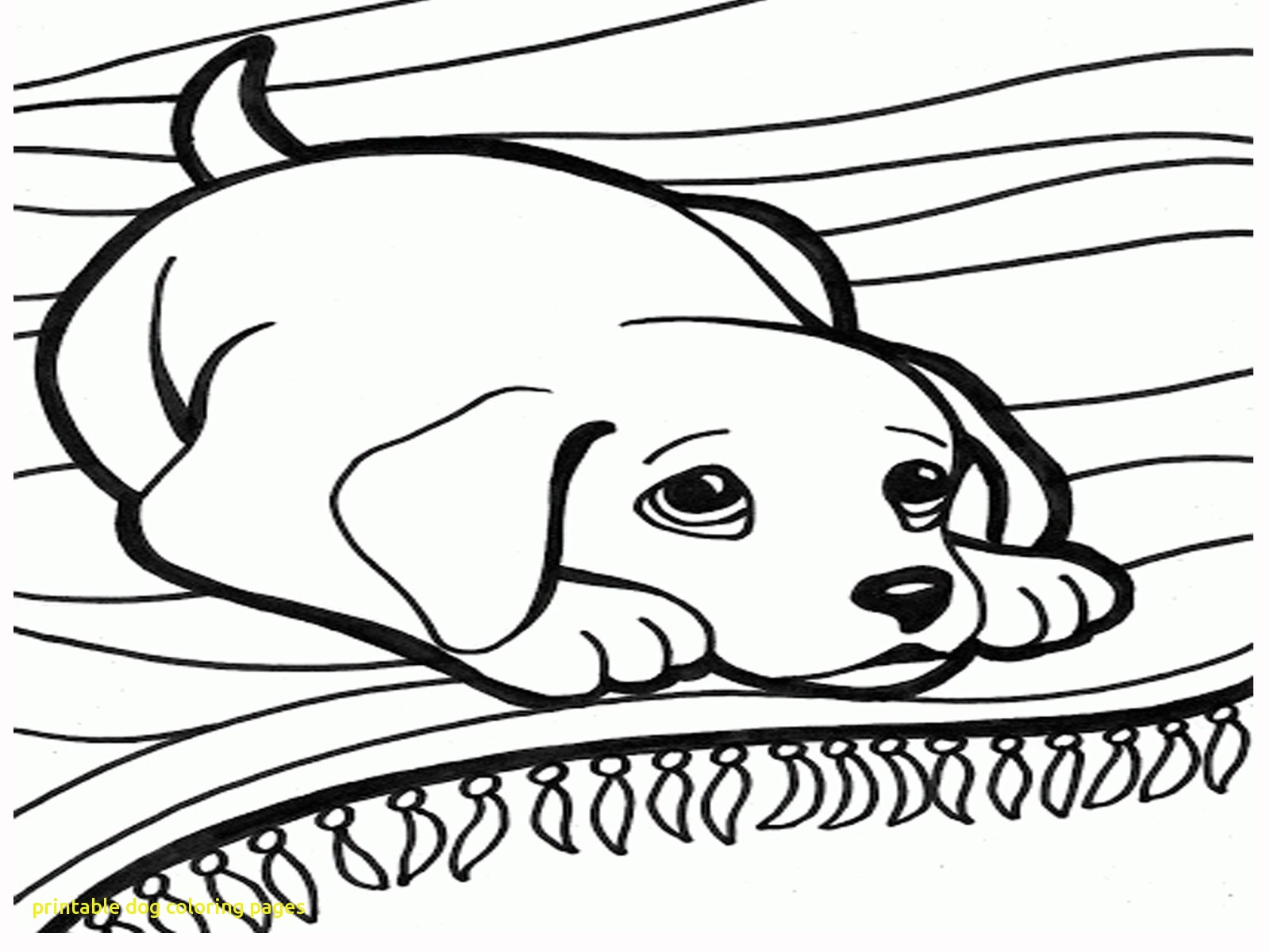 1600x1200 New Coloring Pages Year Of The Dog