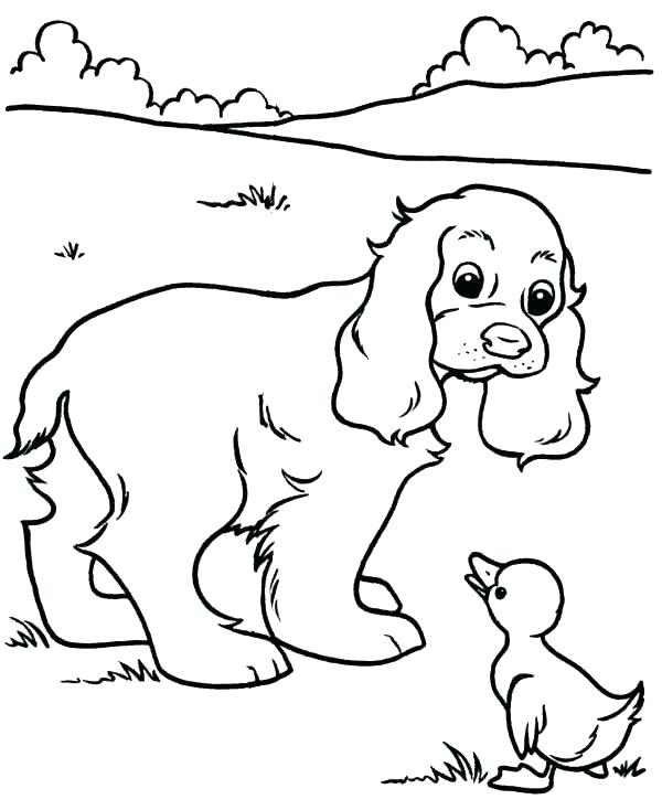 600x734 Printable Puppy Coloring Pages Printable Pet Pictures Kids