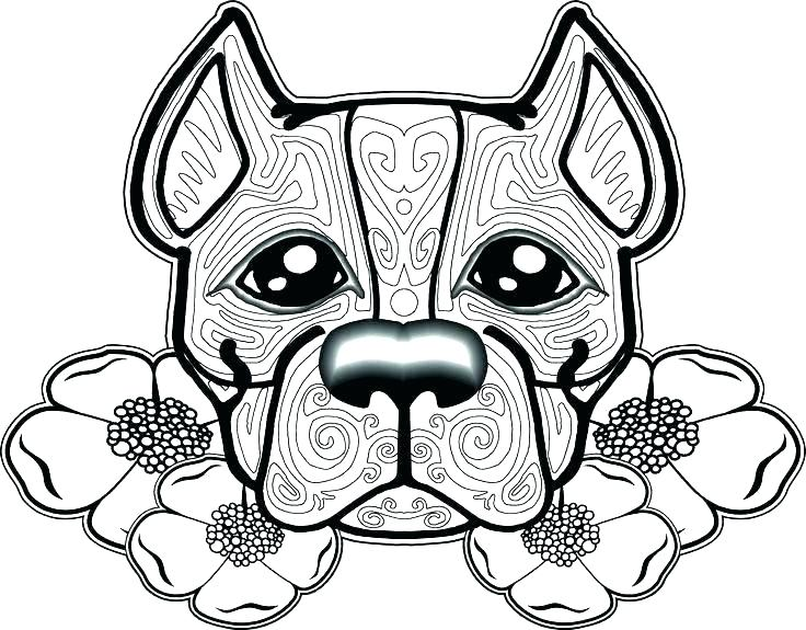 736x575 Color Pages Of Dogs Husky Dog Coloring Pages Printable Dog
