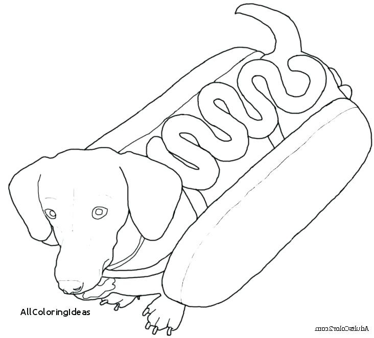 732x663 Dachshund Coloring Pages Dachshund Coloring Pages Plus Dachshund
