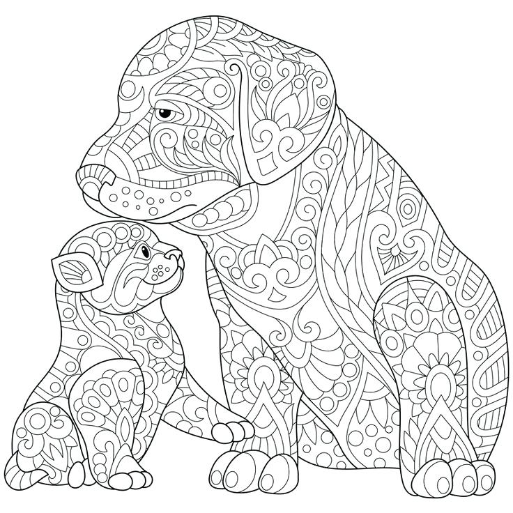 736x736 Cat And Dog Coloring Pages Dog Coloring Pages For Adults Best Cats