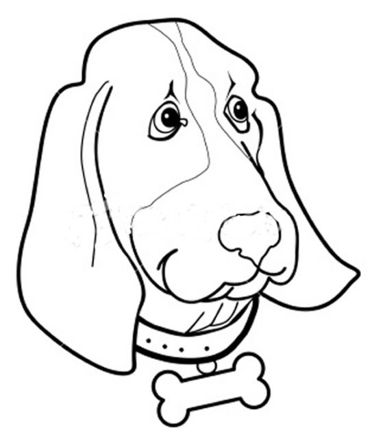 540x640 Coloring Pages Of Dog Head Outer Banks Kids Club Coloring Pages
