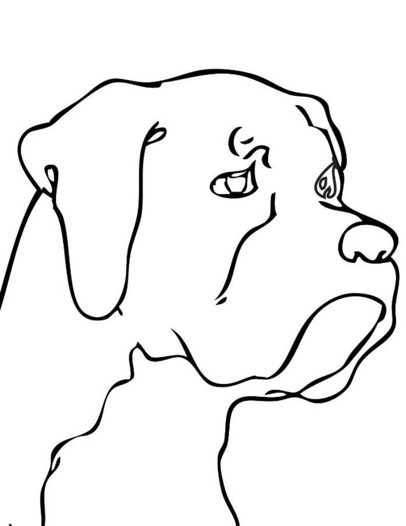 792x1026 Dog Head Coloring Pages