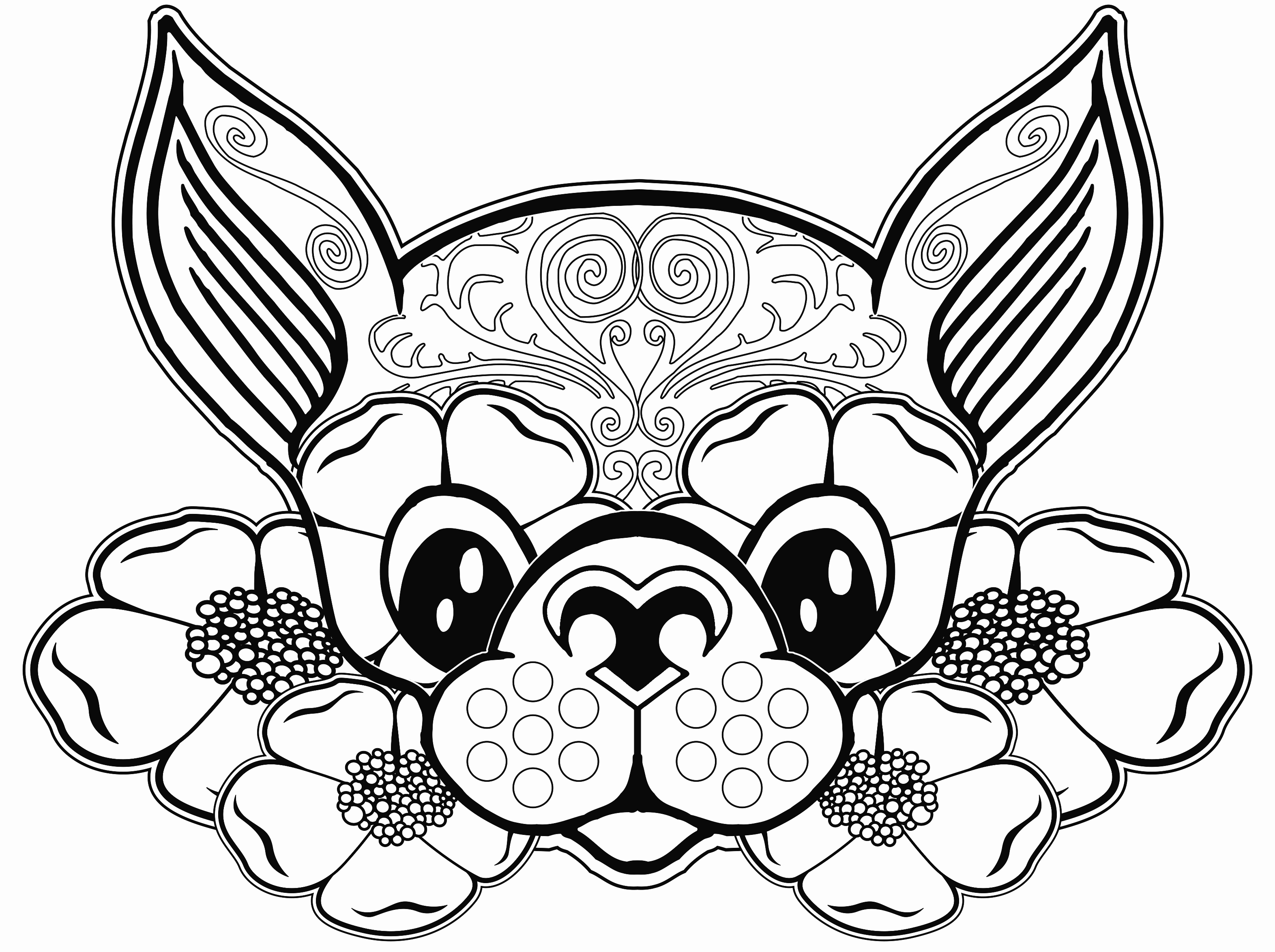 3144x2349 Fall Coloring Pages Printable Awesome Impressive Printable