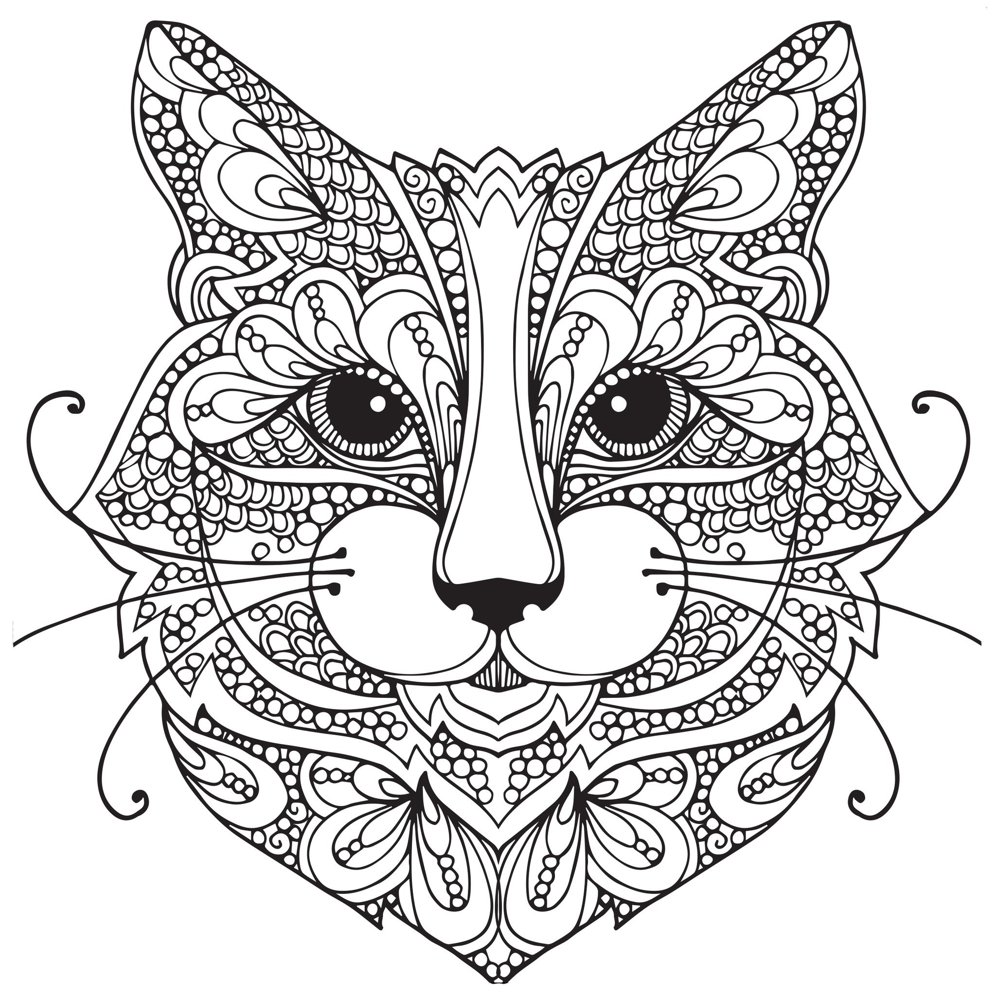 2048x2048 Cats Coloring Pages For Adults Wagashiya