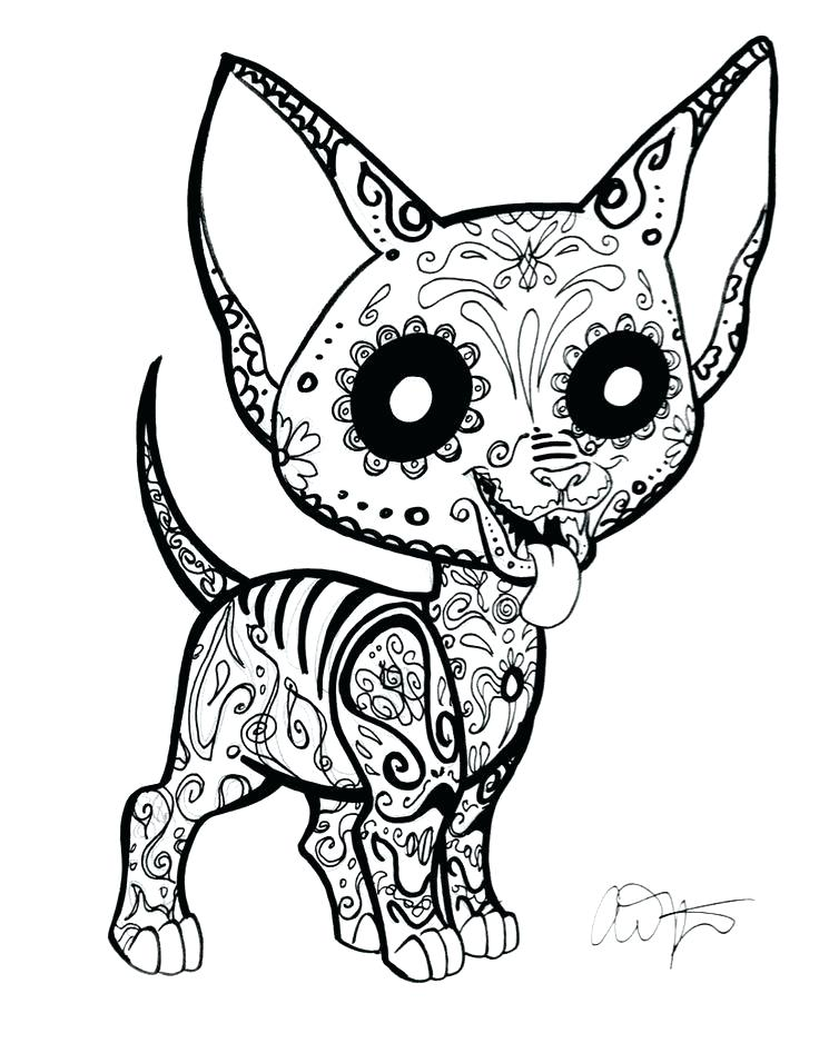 736x956 Color Pages Of Dogs Chihuahua Coloring Page Pics Photos Chihuahua