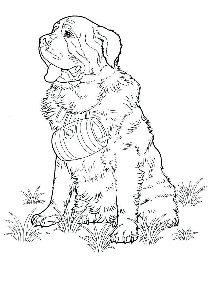 736x1010 Color Pages Of Dogs Free Printable Dog Coloring Pages Dog Coloring