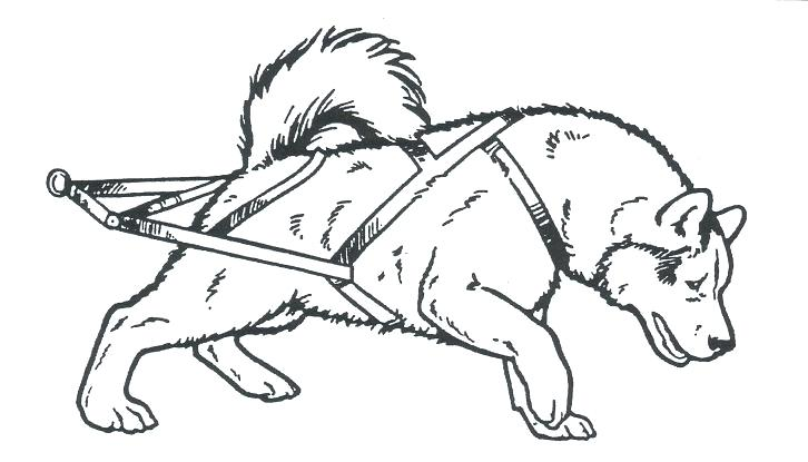 726x415 Dog Sled Coloring Pages Dog Sled Coloring Pictures Interconnect Site