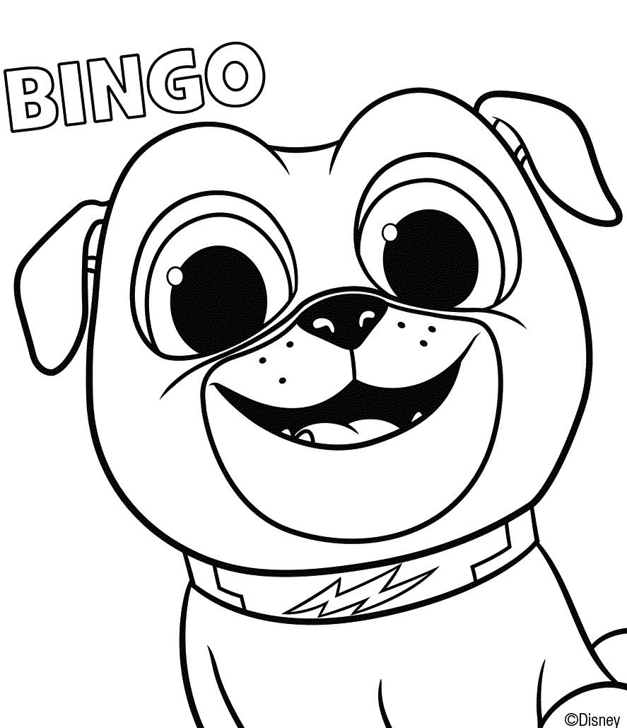 Dog Tag Coloring Page
