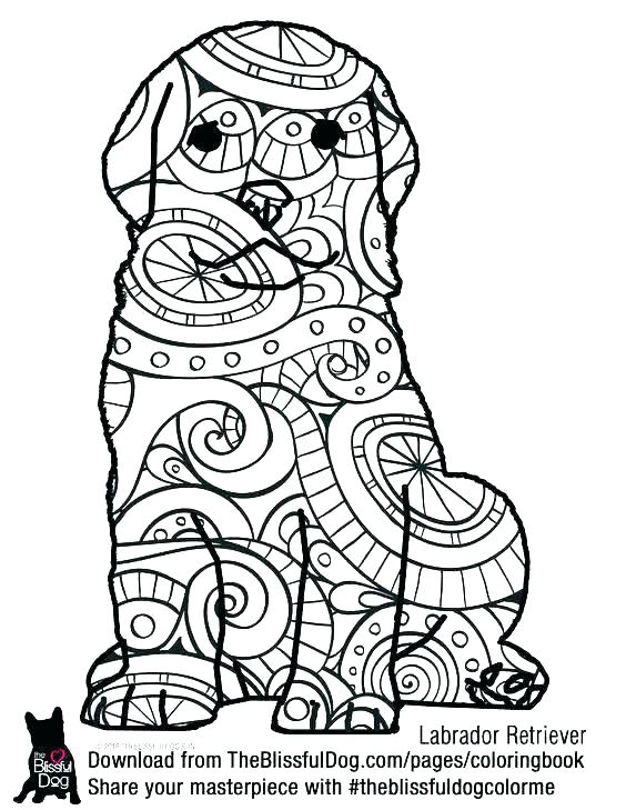 564x729 Dog Tag Coloring Page Dog Tag Coloring Page Fresh Coloring Pages