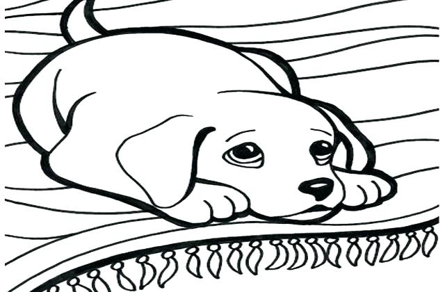 640x420 Dog Tag Coloring Page Military Dog Tag Coloring Pages Ba For Cute