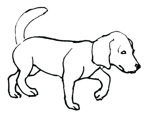 579x451 Coloring Page Of Dog Dog Tag Coloring Page Copy Coloring Page Dog