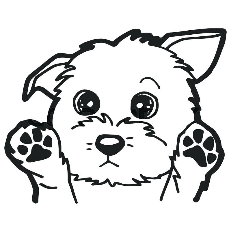 800x800 Coloring Pages Dogs And Puppies Coloring Pages Collection