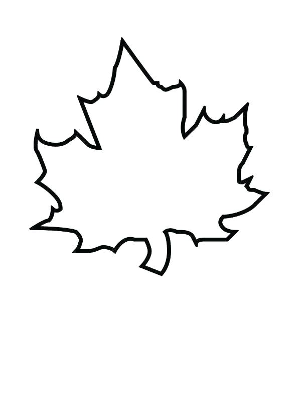 600x800 Coloring Pagesof A Leaf Dogwoods Tree Fall Leaf Coloring Page