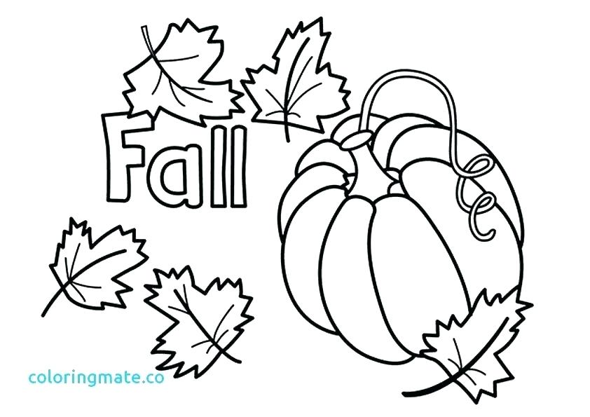 842x595 Fall Leaves Coloring Pages Printable Plus Fall Leaf Coloring Page
