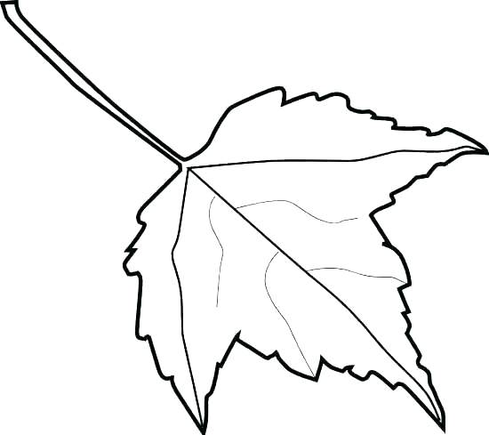 550x489 Autumn Leaf Outline Pics Of Dogwood Leaf Coloring Page Tree Fall