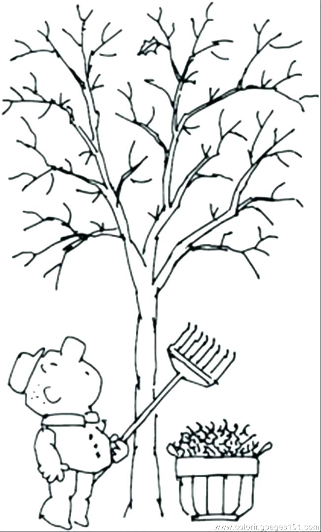650x1078 Bare Tree Coloring Page Bare Tree Coloring Pages Color Bare Tree