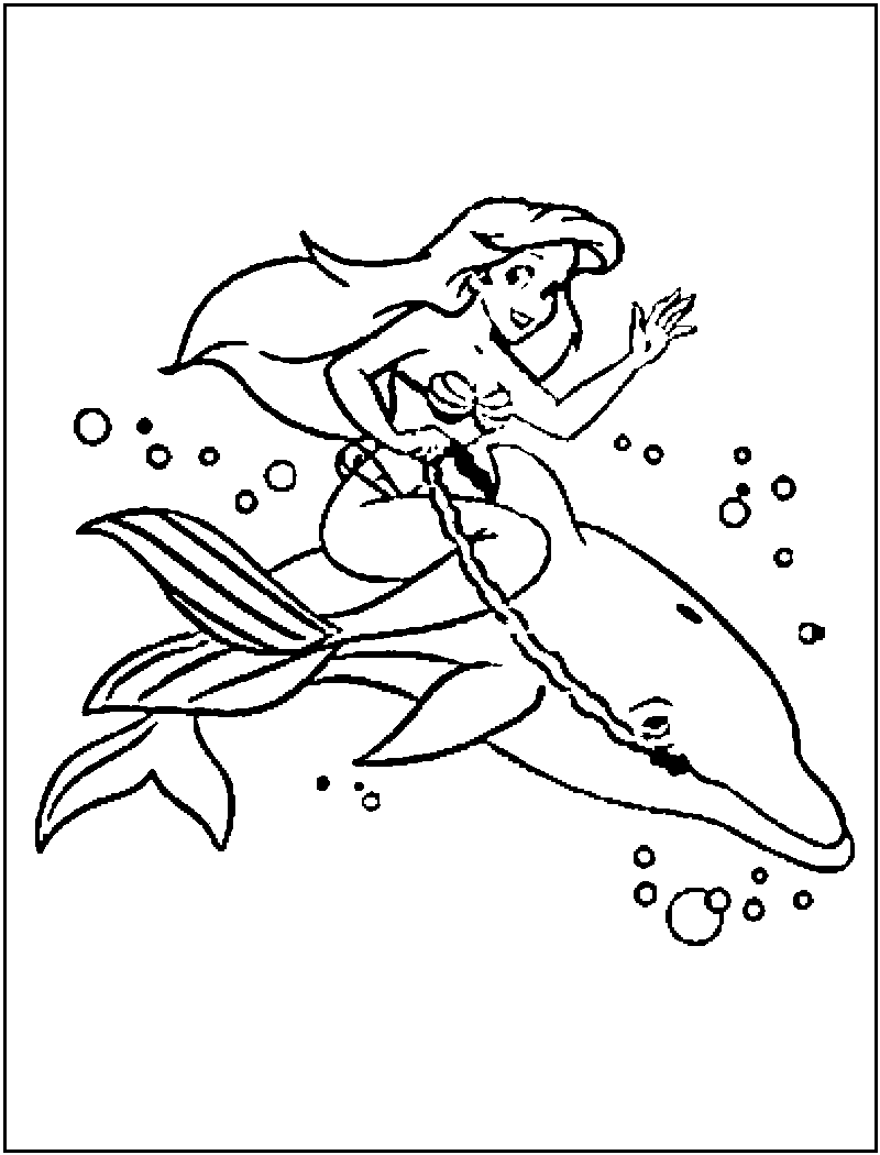 800x1050 Dolphin Picture To Color For Kids My Son Loves Dolphins Printable