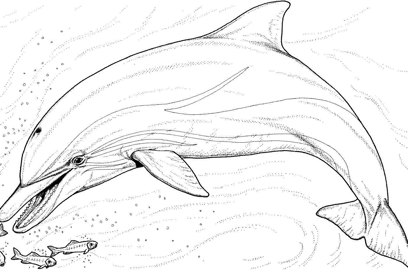 1400x938 Mermaid Coloring Pages For Kids Best Printable Of Mermaids