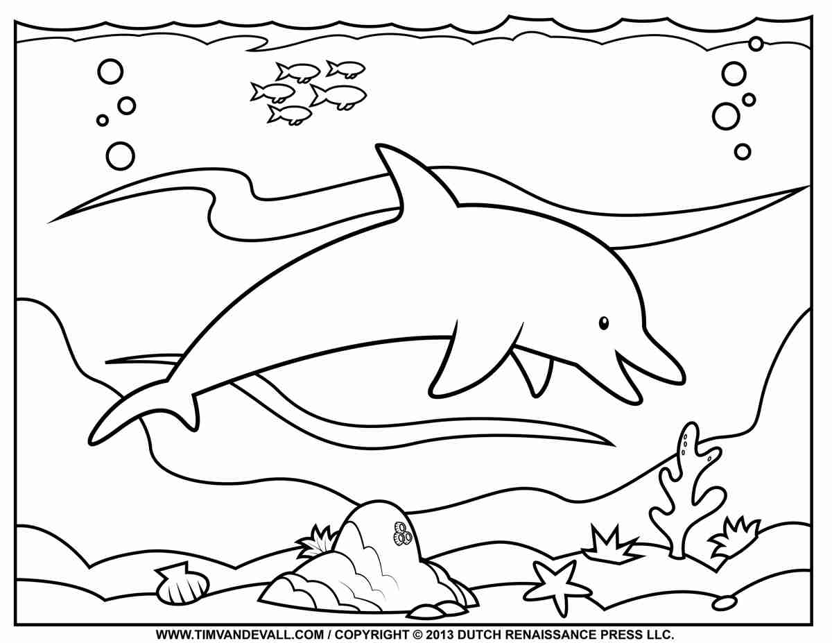 1200x927 Beautiful Dolphin Coloring Page For Kids Animal Pages Mesmerizing