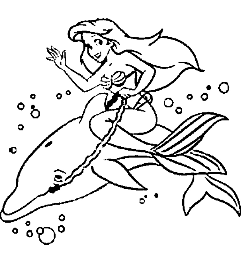 800x831 Dolphin And Mermaid Coloring Page Kids Coloring Pages