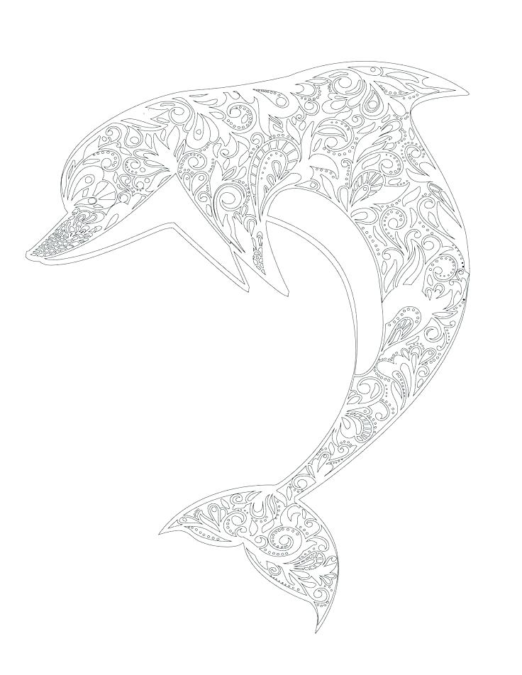 736x952 Dolphin Coloring Pages To Print Out Dolphin Coloring Sheet Adult