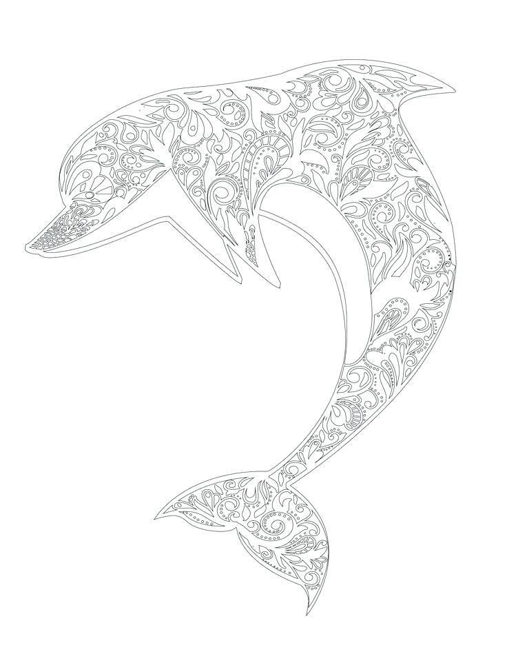 736x952 Printable Dolphin Coloring Pages For Adults Dolphin Coloring Pages